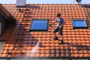Sunshine Coast Roof Cleaning